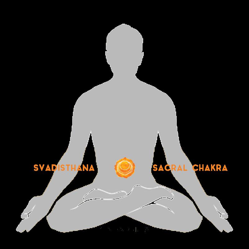 savidsthana sacral chakra spleen chakra