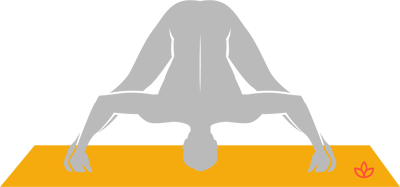 what is prasarita padottanasana d  definition from yogapedia