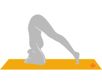 Half Headstand