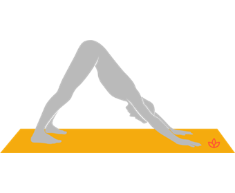 Downward-Facing Dog Pose