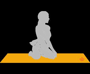 Bharadvaja's Twist
