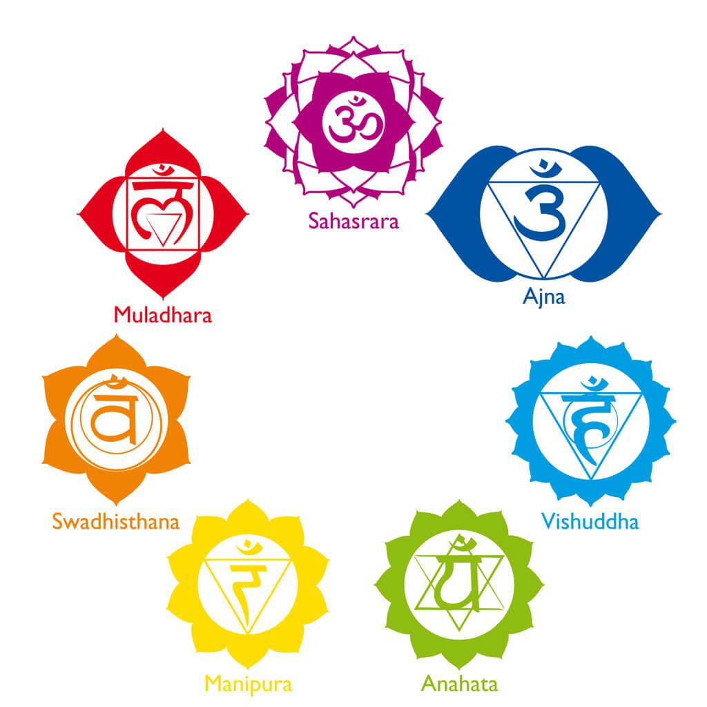 7 chakras lotus