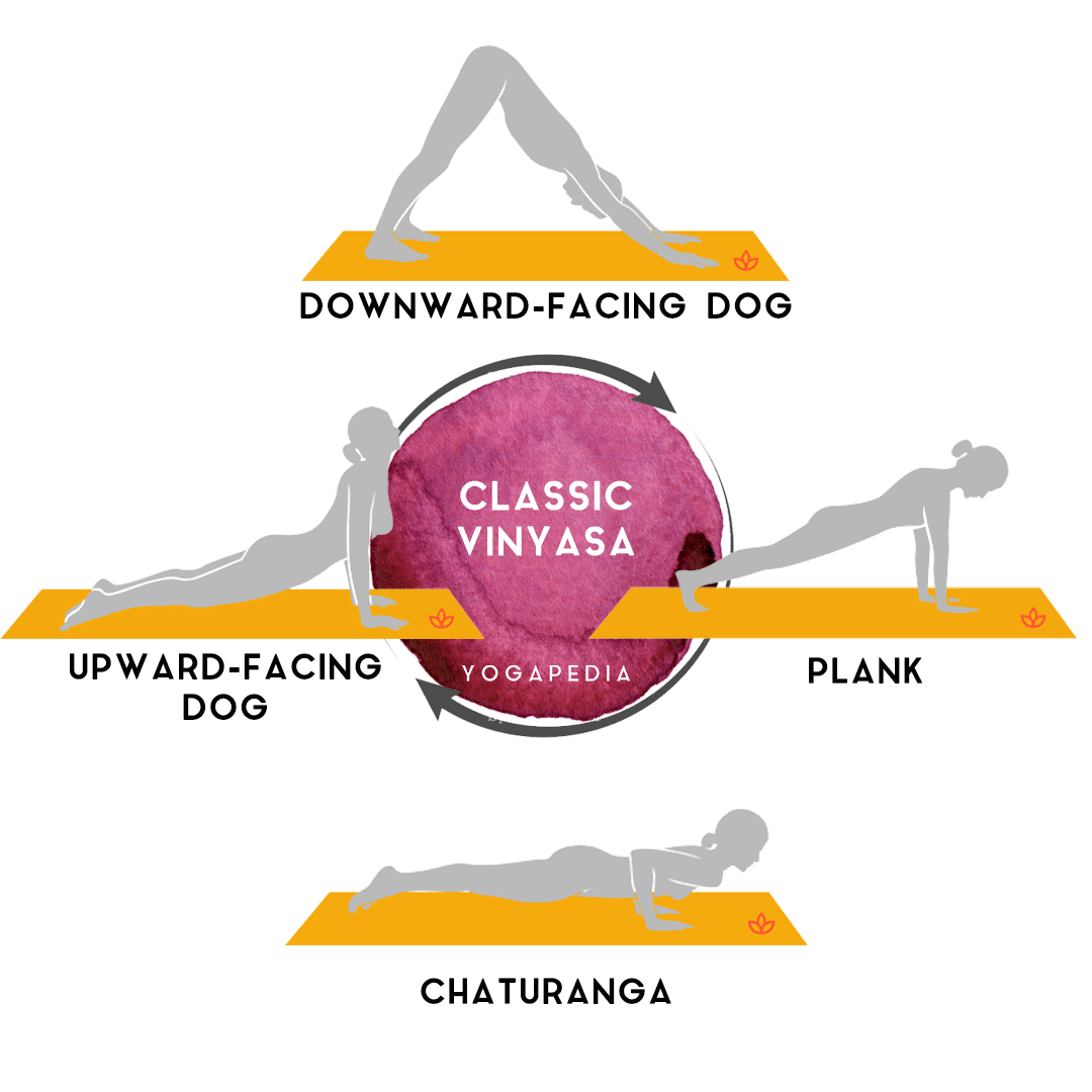 infographic of a standard yoga vinyasa