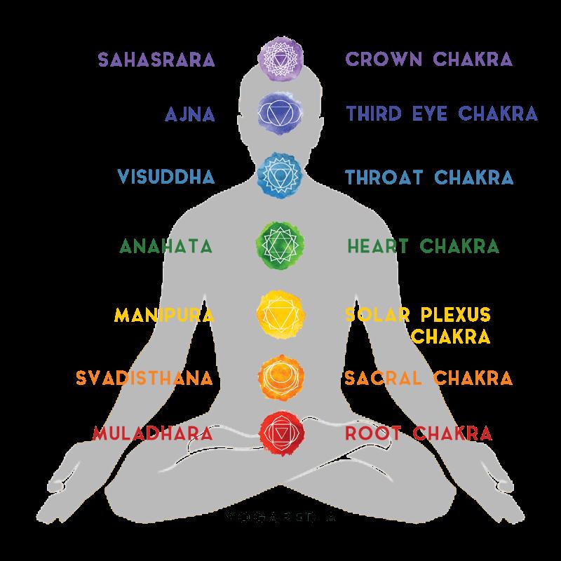 body showing the seven chakras visudhha anahata manipura sahasrara svadisthana muladhara crown chakra third eye chakra throat chakra heart chakra solar plexus chakra sacral chakra root chakra