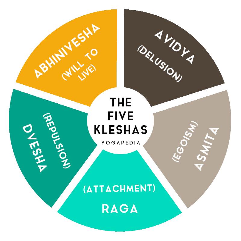 the five kleshas infographic avidya asmita raga dvesha abhinivesha