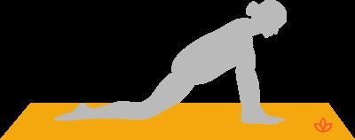 Half Splits Pose Ardha Hanumanasana Yogapedia