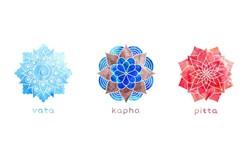 The 3 Doshas of Ayurveda