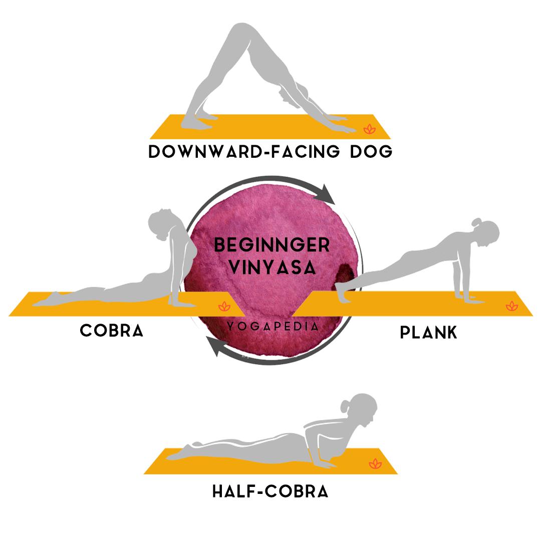 beginner vinyasa flow