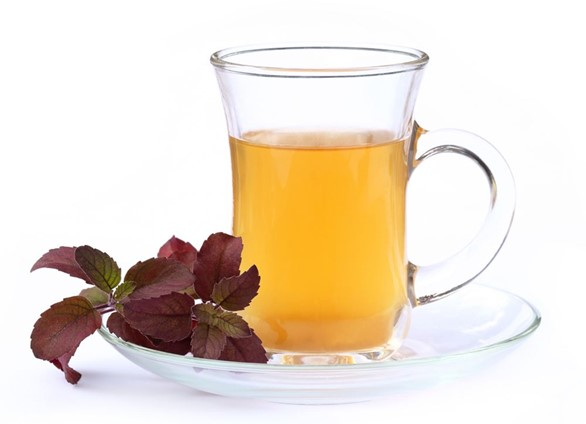 The Healing Powers of Tulsi Tea