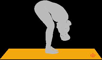 yoga poses  yogapedia pose directory
