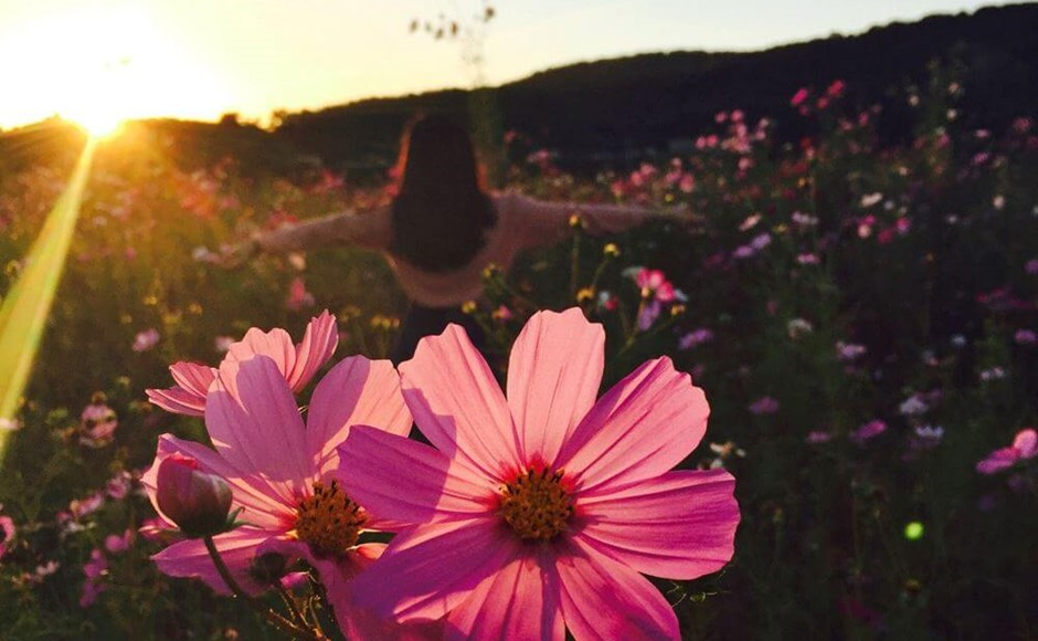 Live 'Happily Ever After' With These Top 3 Benefits of Meditation