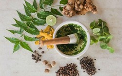 Top 5  Ayurvedic Medicinal Plants