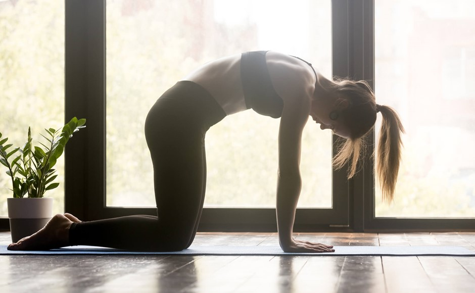 5 Essential Asanas to Kickstart Your Mornings