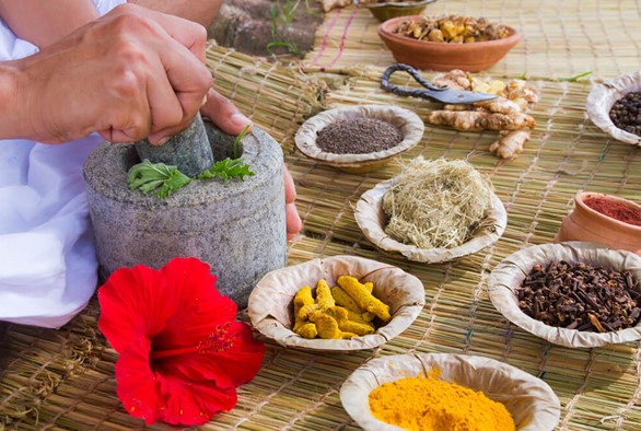 The 3 Best Ayurveda Schools in America