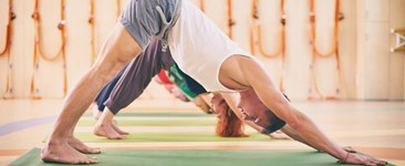 Achieving Your Best Downward-Facing Dog