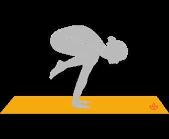 Crane Pose
