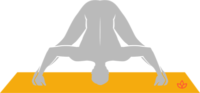 widelegged forward bend  prasarita padottanasana  yogapedia