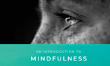FREE GUIDE: An Introduction to Mindfulness - How to Savour Your Present Moment