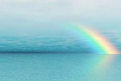 RAIN: A Technique for Mindfulness