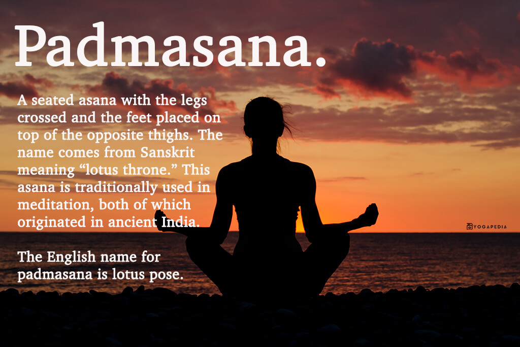 What Is Padmasana Definition From Yogapedia