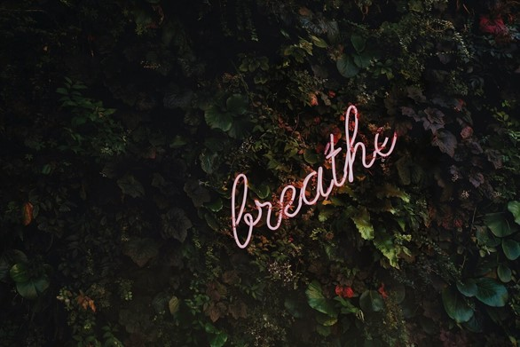 The Power of Breath: An Introduction to Pranayama